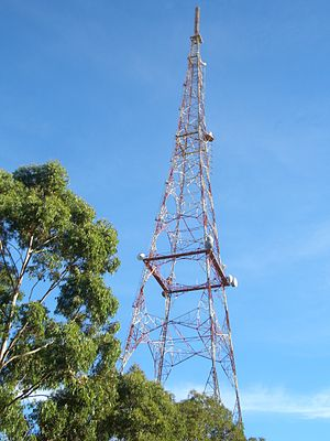TCN - TCN 9 Tower at Willoughby