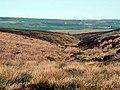 Wogden Clough - geograph.org.uk - 416123.jpg