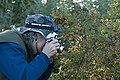 Woman photographing monarch butterfly.jpg