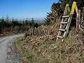 Wooden Stile - geograph.org.uk - 2310403.jpg