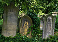Wroclaw Old Jewish Cemetery IMGP7182.jpg