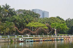Xiamen-Zhongshan gongyuan dragon.jpg