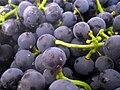 Yeast on grapes.jpg