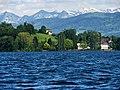 Zürichsee - Halbinsel Au IMG 2569.JPG