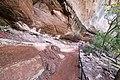 Zion National Park (15186286629).jpg