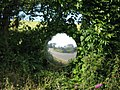 """Moorview"" reflected in a hedgerow - geograph.org.uk - 854602.jpg"