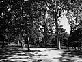 (El Retiro) Madrid in black and white.JPG