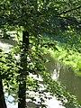 (PL) Polska - Warmia - Las Miejski w Olsztynie - The City Forest in Olsztyn - zakole rzeki Łyna - Lyna river bend (28.VIII.2012) - panoramio (4).jpg