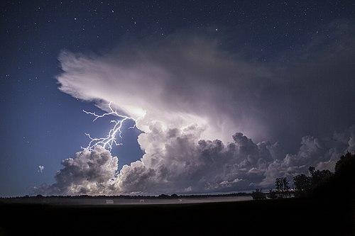 Äike öisel Saaremaal