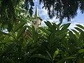 Église de Collex - panoramio.jpg