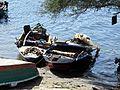 Îlle Aswan - panoramio - youssef alam (2).jpg