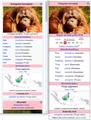 Česká-Wikipedie-taxobox-orangutan-velikost-písma2017.png