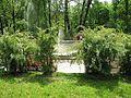 Ботанічний сад ім. І.Фоміна IMG 7381.jpg