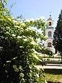Дзвіниця храму Вознесіння Господнього та бузина. - panoramio.jpg