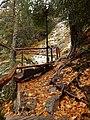 Есен в Каньона.JPG