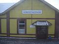 ЖД-Станция Новоспасское.jpg