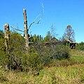 Заброшенная деревня - panoramio (2).jpg
