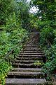 Лестница - panoramio (30).jpg