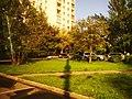 Мурановская улица 20190718 171851.jpg