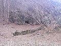 По пътя за хижа Хубавец, резерват Стара река... 23.jpg