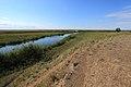 Речка Буртя в северном направлении - panoramio (1).jpg