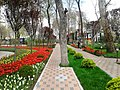 Скверы Душанбе 5.jpg