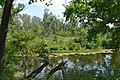 Старое озеро - panoramio (1).jpg