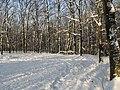 Украина, Киев - Голосеевский лес 153.jpg