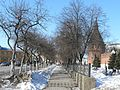 Ул. Менделеевская (Mendeleevskaya st.) - panoramio.jpg