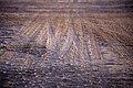 تصاویر دریاچه نمک حوض سلطان در استان قم 26.jpg