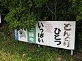 どんぐり ひとつ 愛 いっぱい (4070559789).jpg