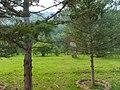 五台山 Wutaishan - panoramio - lienyuan lee.jpg