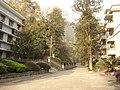 厂区入口 - panoramio.jpg