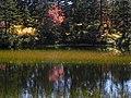 緑の沼② - panoramio.jpg