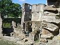 03 Château de Ranrouët.JPG