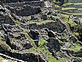 050 Unreconstructed eastern section Machu Picchu Peru 2308 (15160253811).jpg