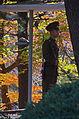 1160 - Nordkorea 2015 - Myohyang Berge - Freundschaftsausstellung (22960854392).jpg
