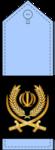 17- سرتیپ دوم--IRIAF.png