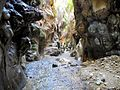 17 Wadi Bin Hammad Tropical Rain Forest Trail - In the Siq - panoramio.jpg