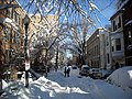 1800 block of Corcoran Street, N.W. - Blizzard of 2010.JPG