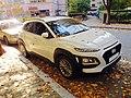 18 Hyundai Kona whitefront.jpg