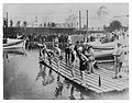 1904 Olympics- Fifty yard swimming dash, final heat.jpg
