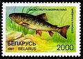 1997. Stamp of Belarus 0223.jpg