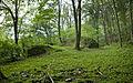 2009 09 22 Rolf Franke location Germany 51674 Wiehl Ruine Bieberstein (2).jpg