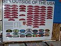 2010 National Scout Jamboree 100 1141.JPG