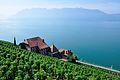 2012-08-12 10-37-21 Switzerland Canton de Vaud Chexbres.JPG