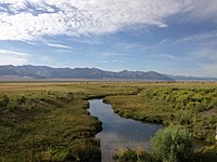 2014-07-28 08 08 07 View south up the Reese River from Nevada State Route 722 (Carroll Summit Road) in Lander County, Nevada.JPG