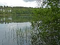 2015-05-25 Rochowsee 482.jpg