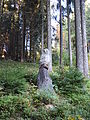 20151011 xl P1000388 Oberhof Stadt am Rennsteig und Umgebung.JPG