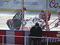 2015 NHL Winter Classic IMG 8004 (15698816584).jpg